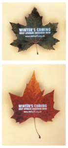 Winter's Coming appeal message on leaves